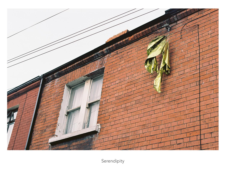 40_serendipity_web.jpg