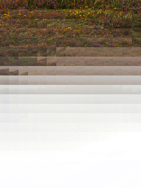 fracturedlandscape6.jpg