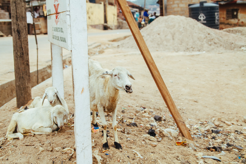 lekan nigeria photo story_lesleyade_ade-yemi-14.jpg