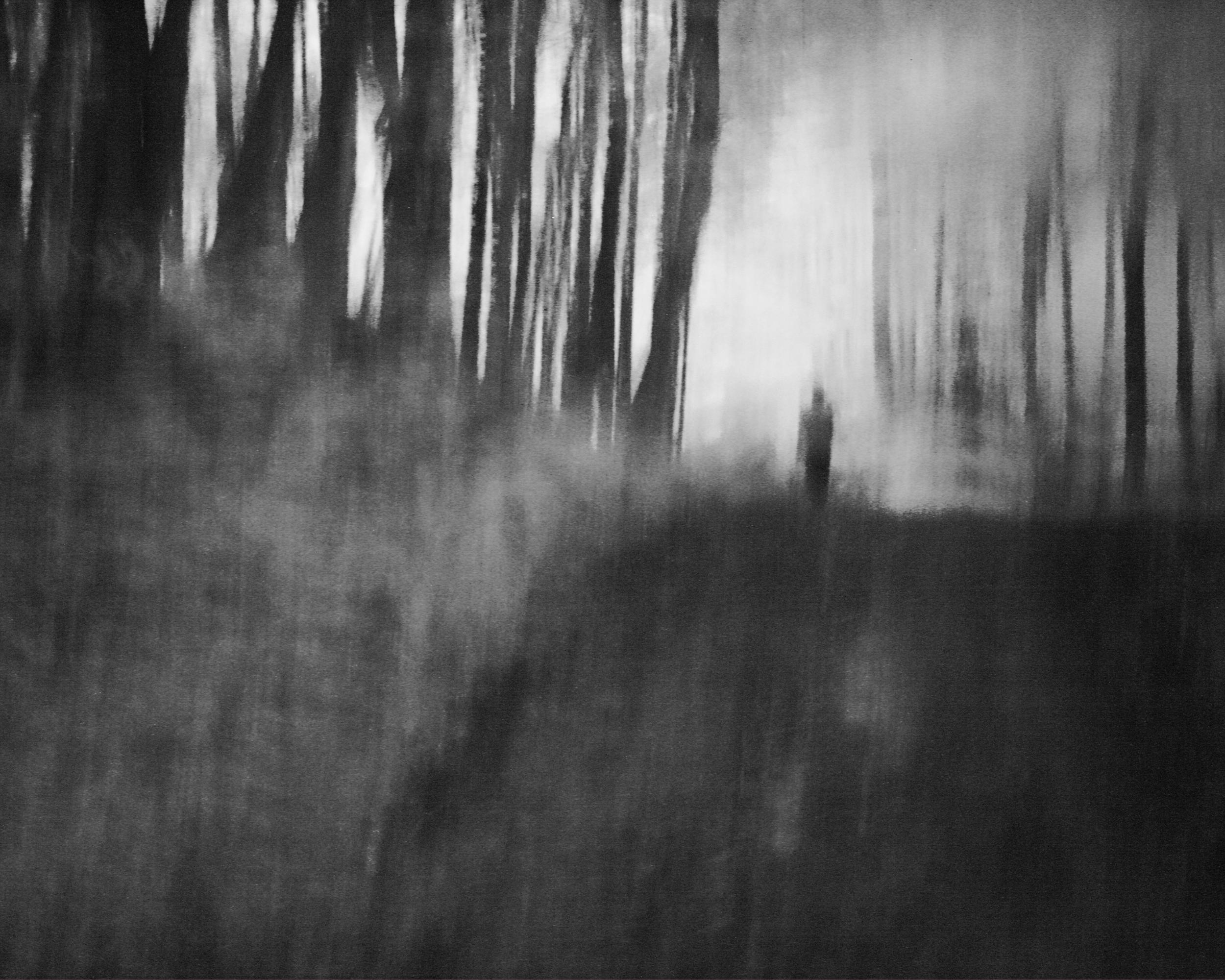 walkinwoods(8x10).JPG