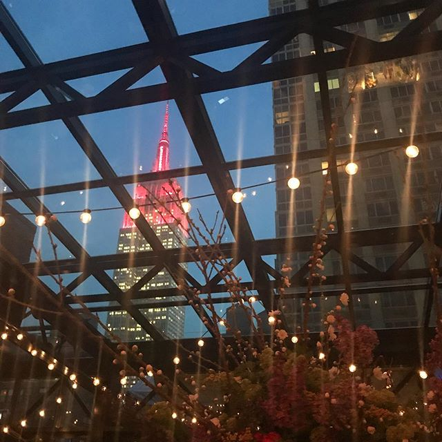 Great views and a great event last night! @refineryrooftop #bubblefoundation #tasteofspring #nyceventplanning #deseoevents