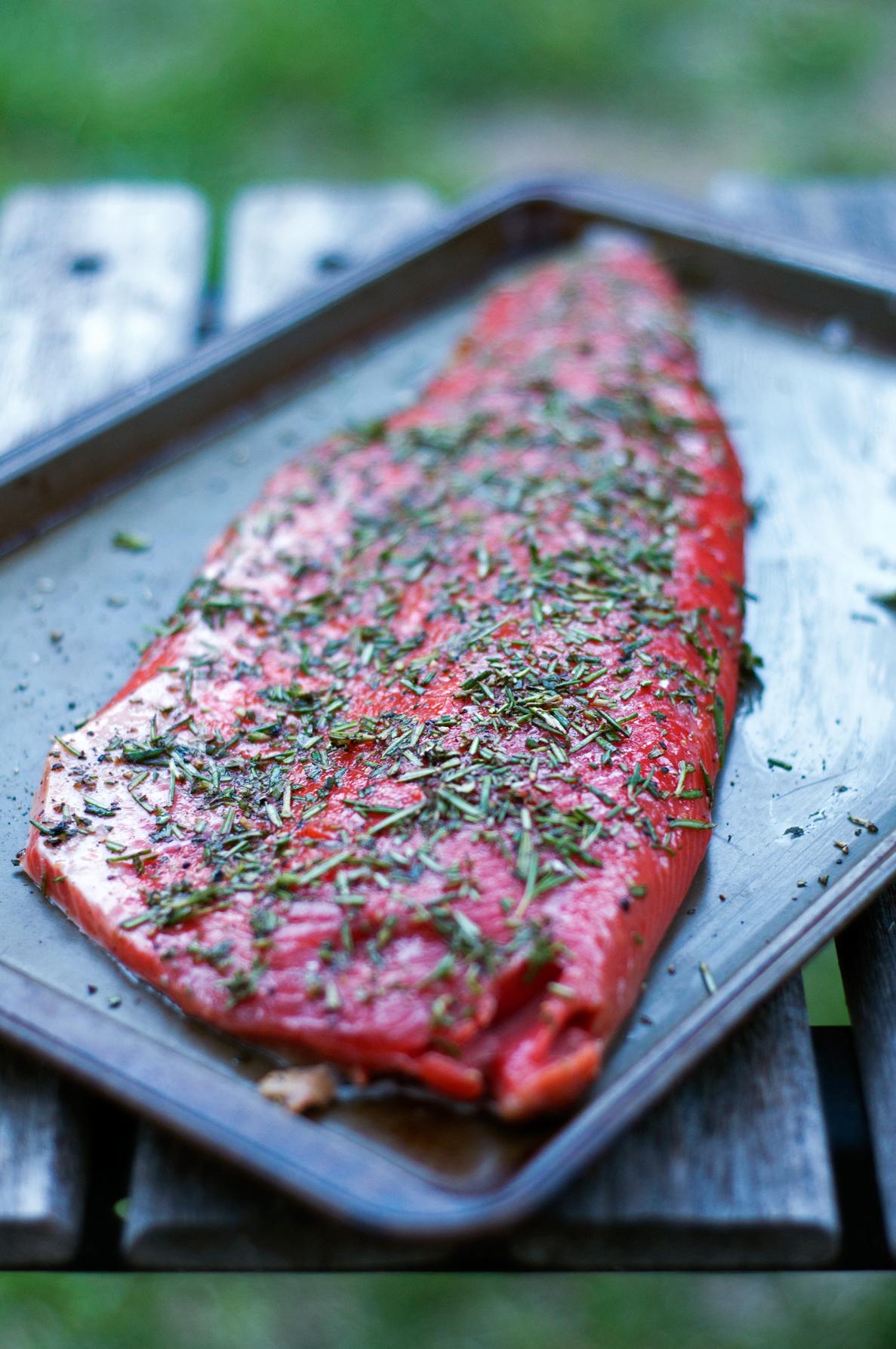 salmon(608)web.jpg