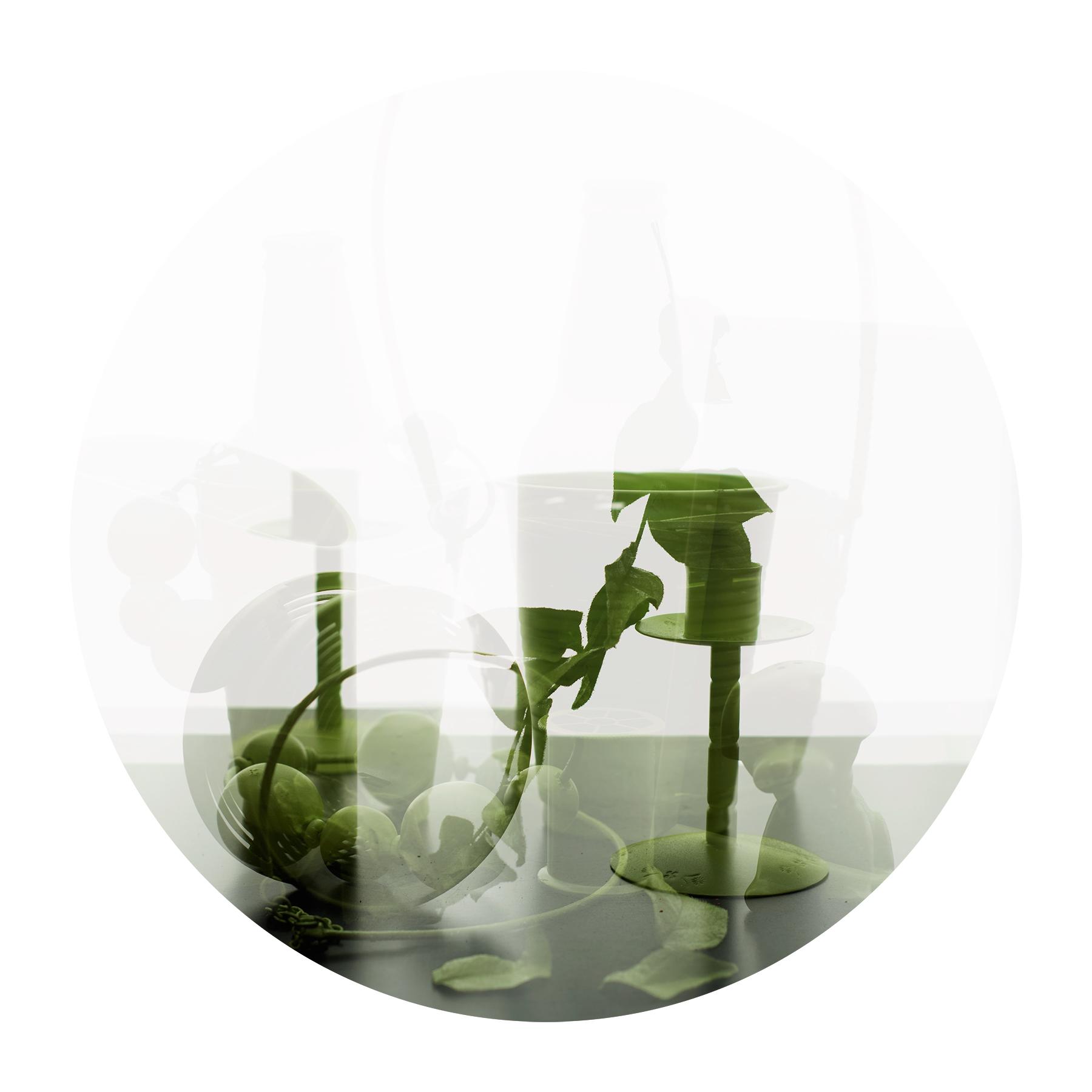 Green Still Life 1