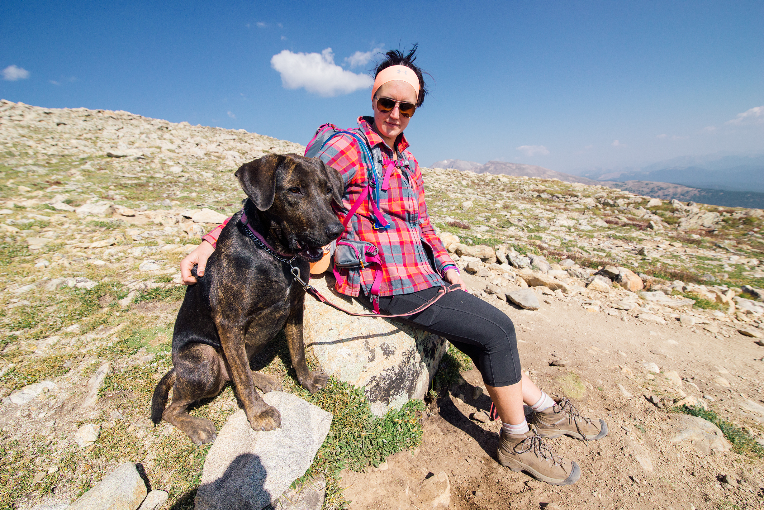 Puppy and Friend on Mount Elbert Hike