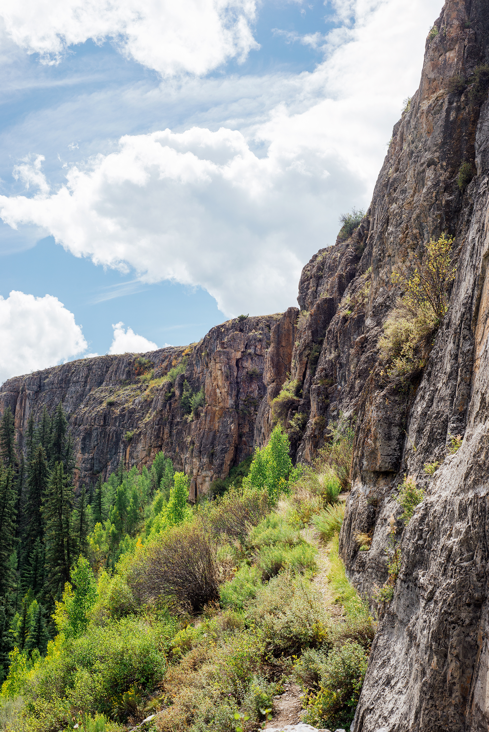 Cliffs At Lime Creek Canyon