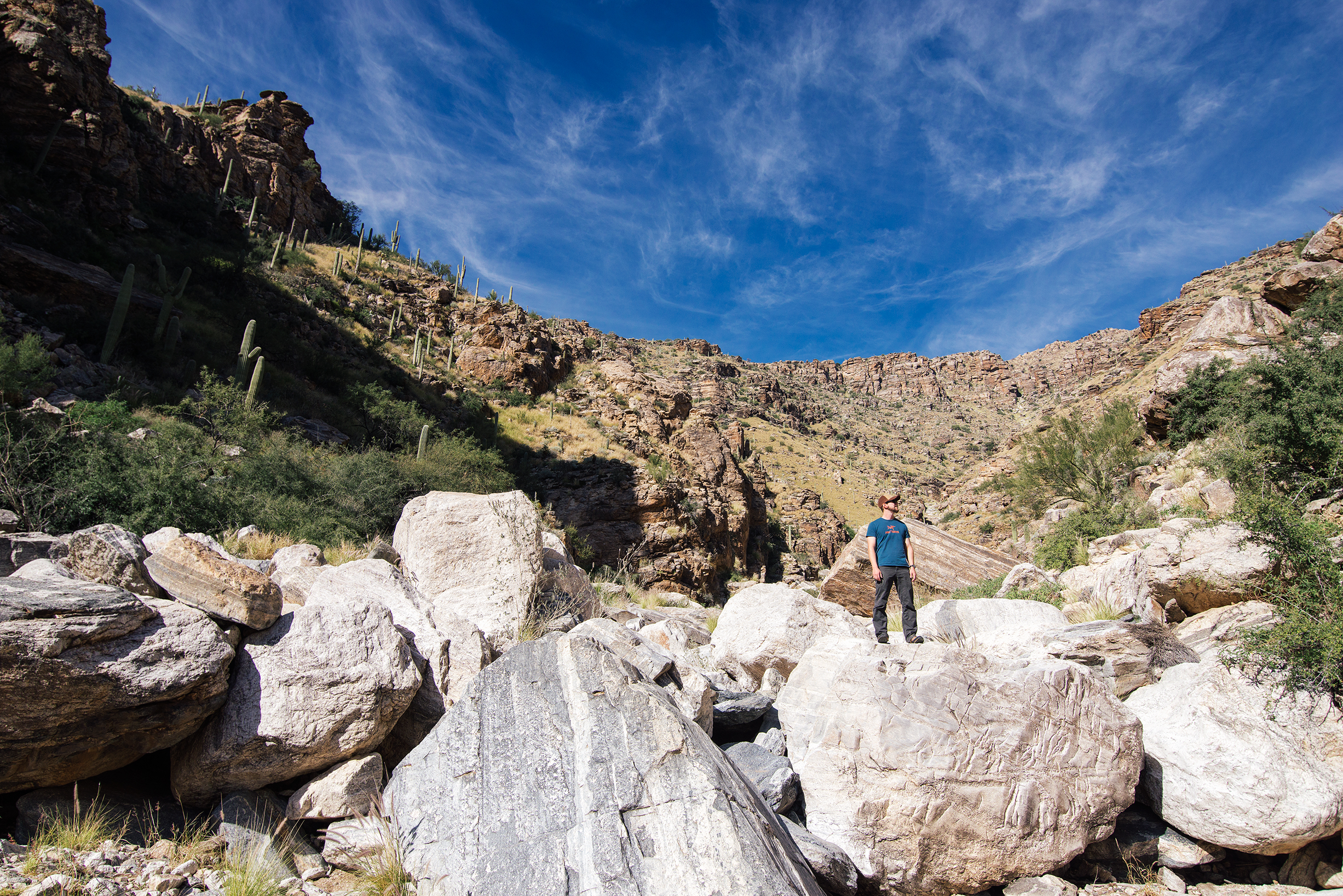 Exploring The Catalina Mountains