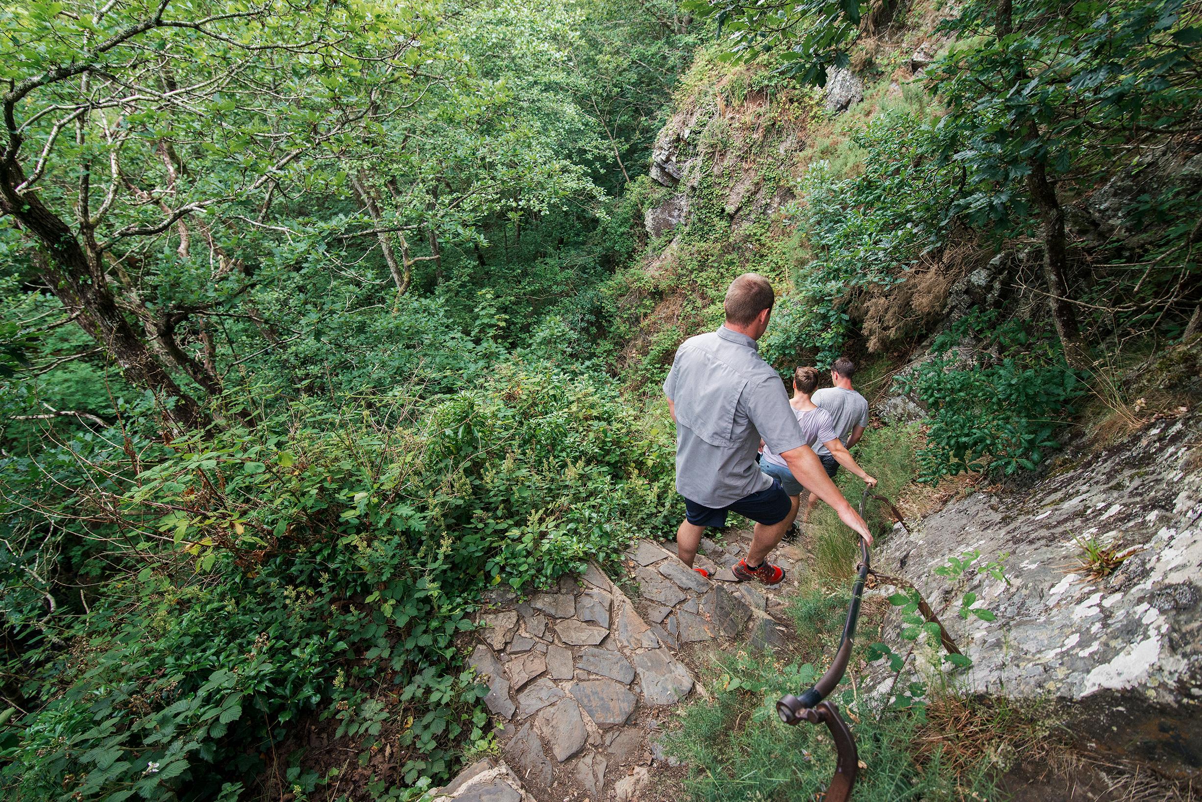 Fingle Bridge Hike (Back To Castle Drogo)