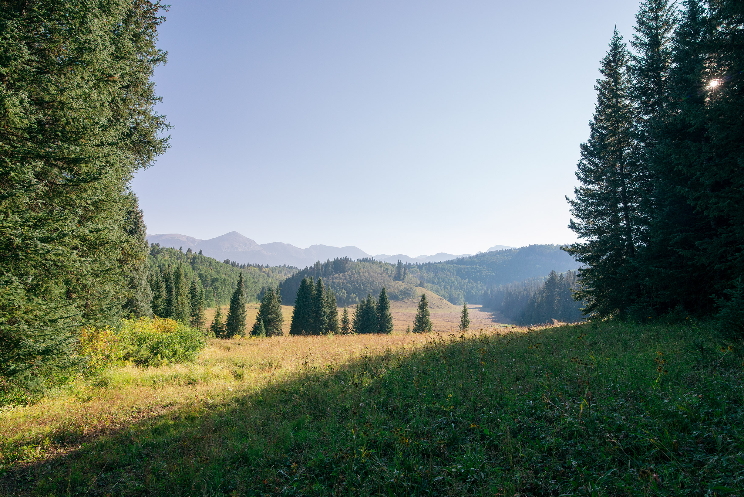 Mountain Morning Light