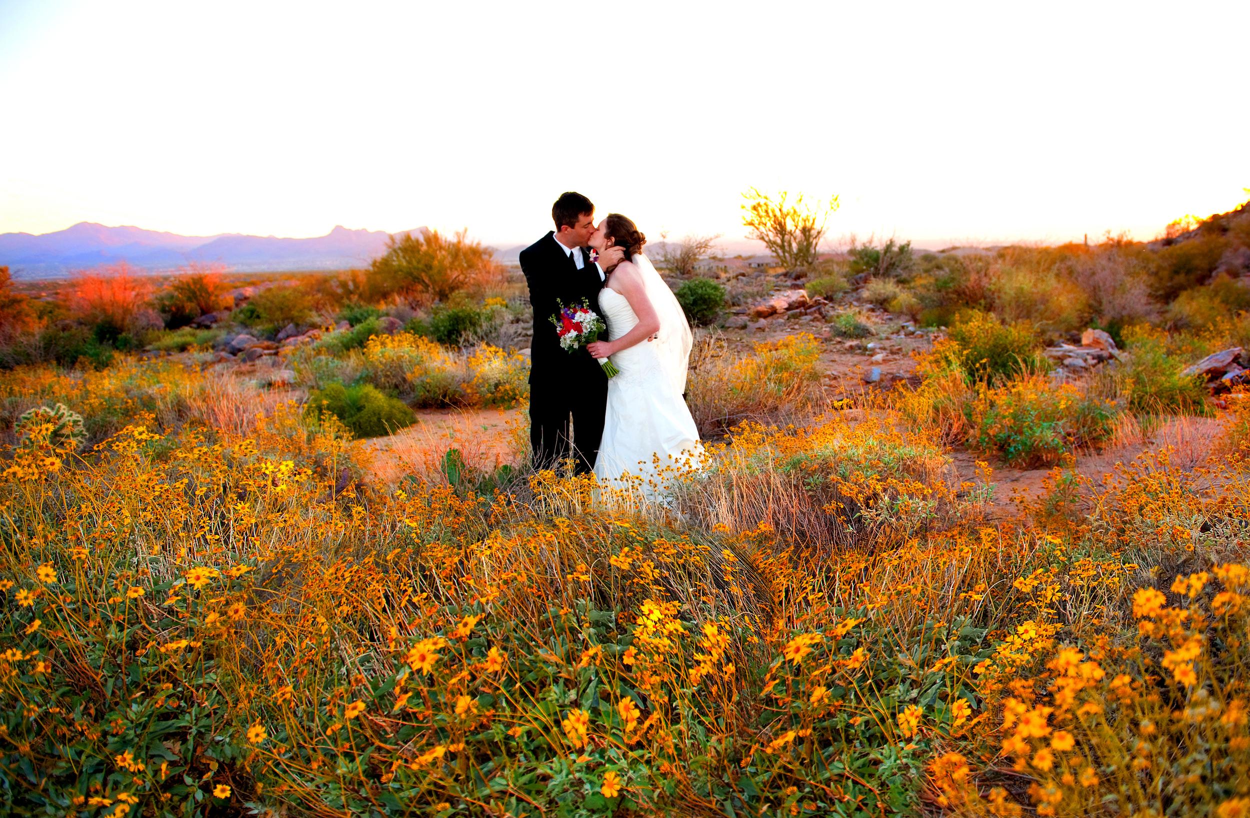 Wedding0673 highlight.jpg