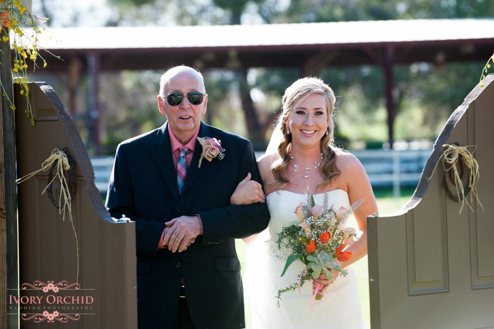 Wedding-6208.jpg