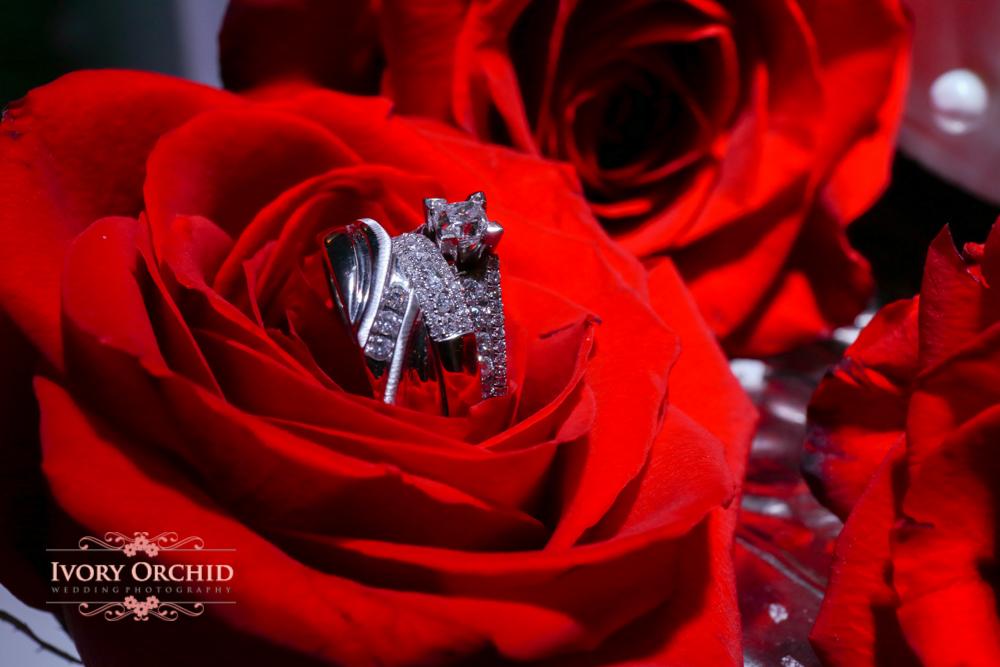 IvoryOrchidPhotography-5728.jpg