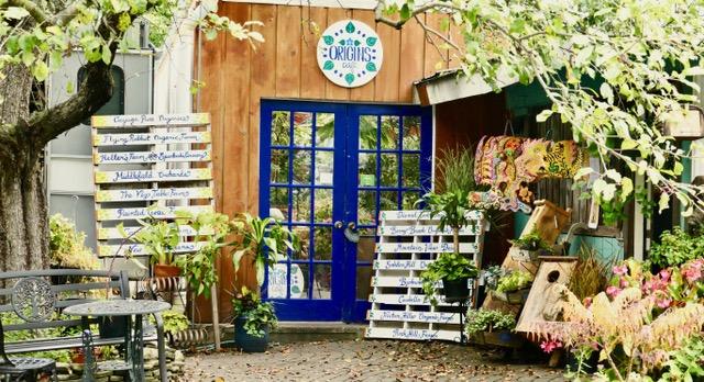 Origins Cafe at Carefree Gardens