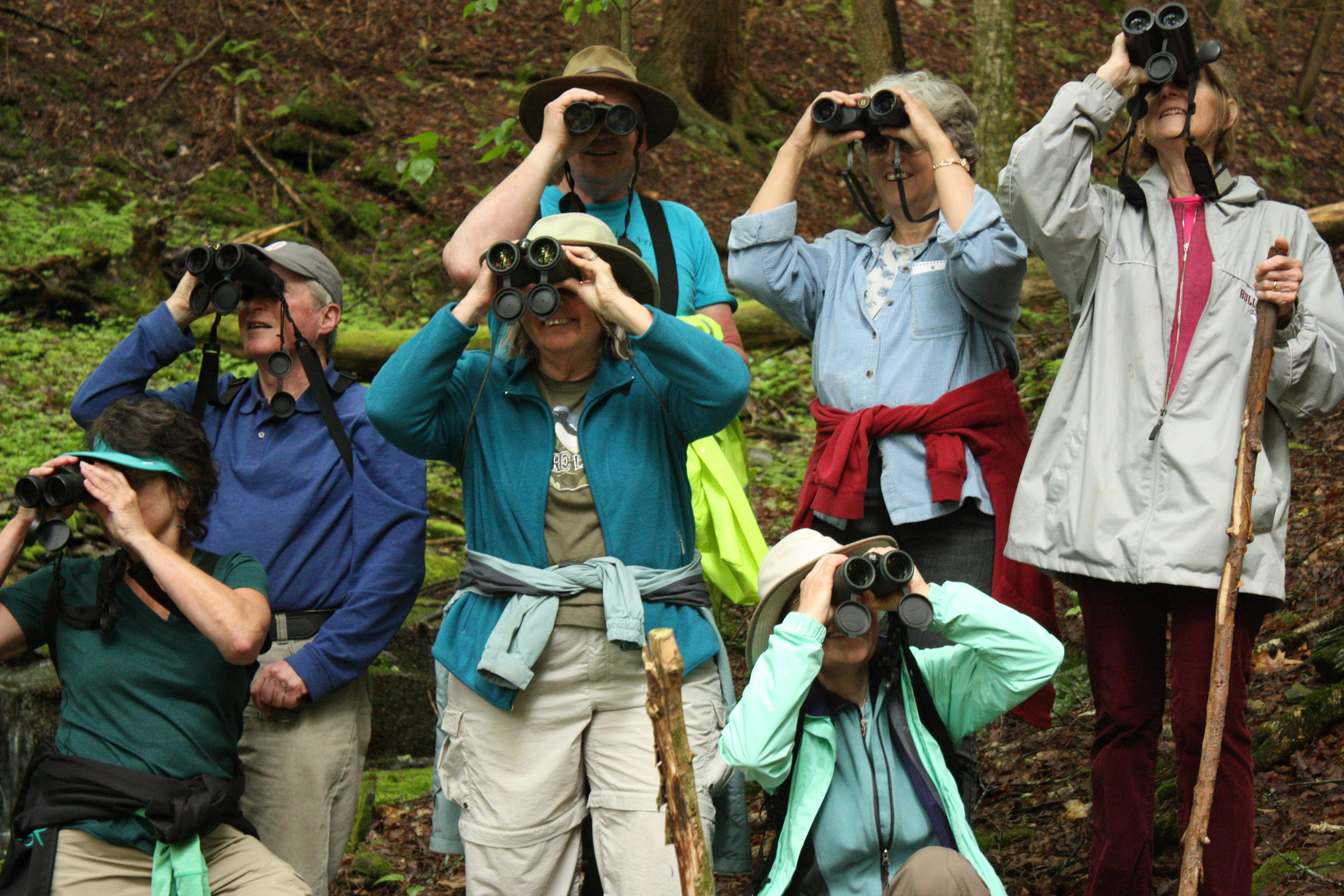 doas bird walk.jpg