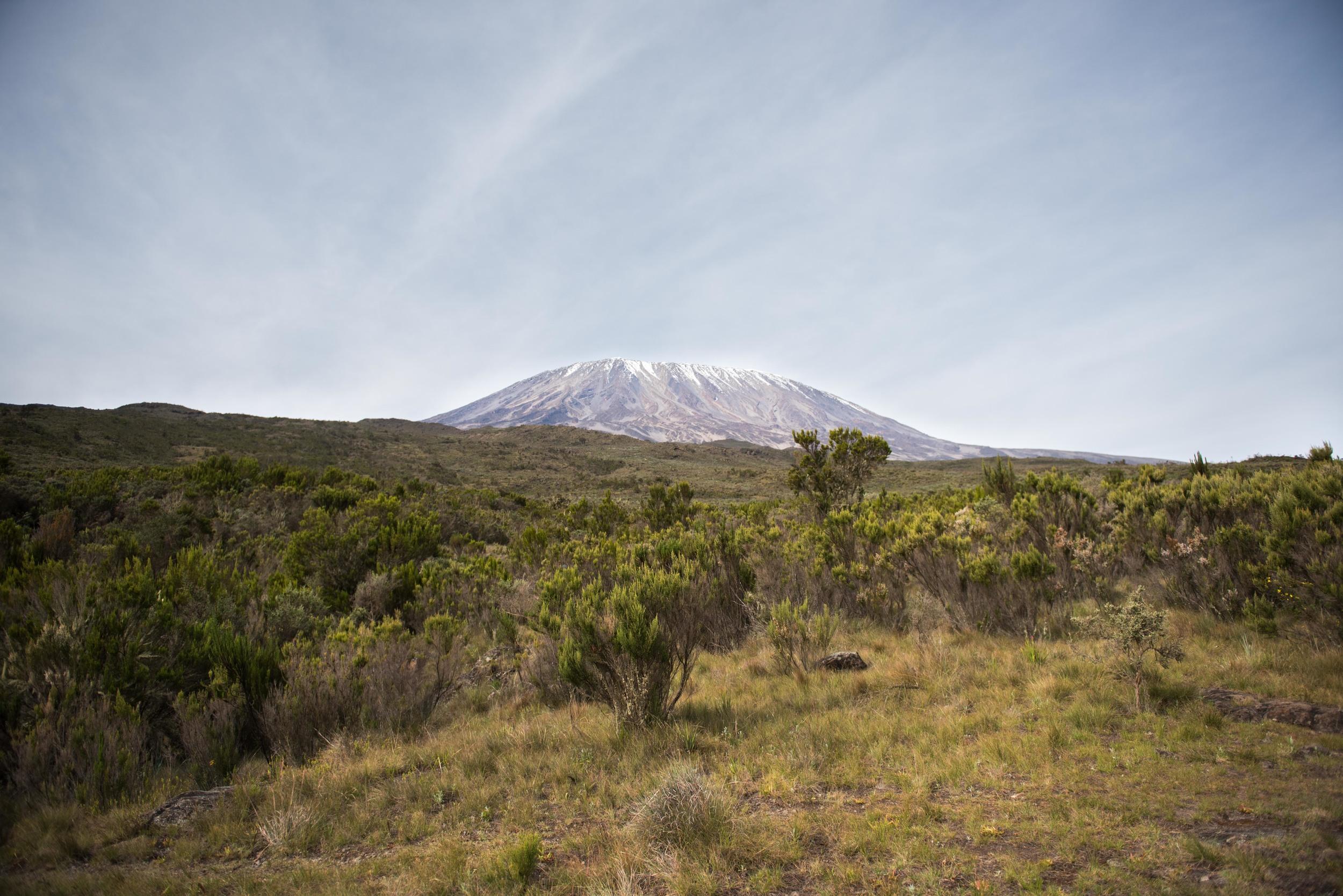 WEB_Kilimanjaro-9.jpg