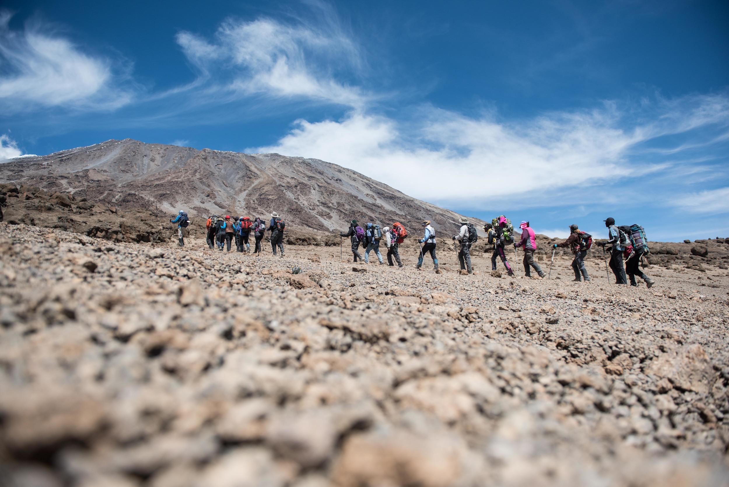 WEB_Kilimanjaro-24.jpg