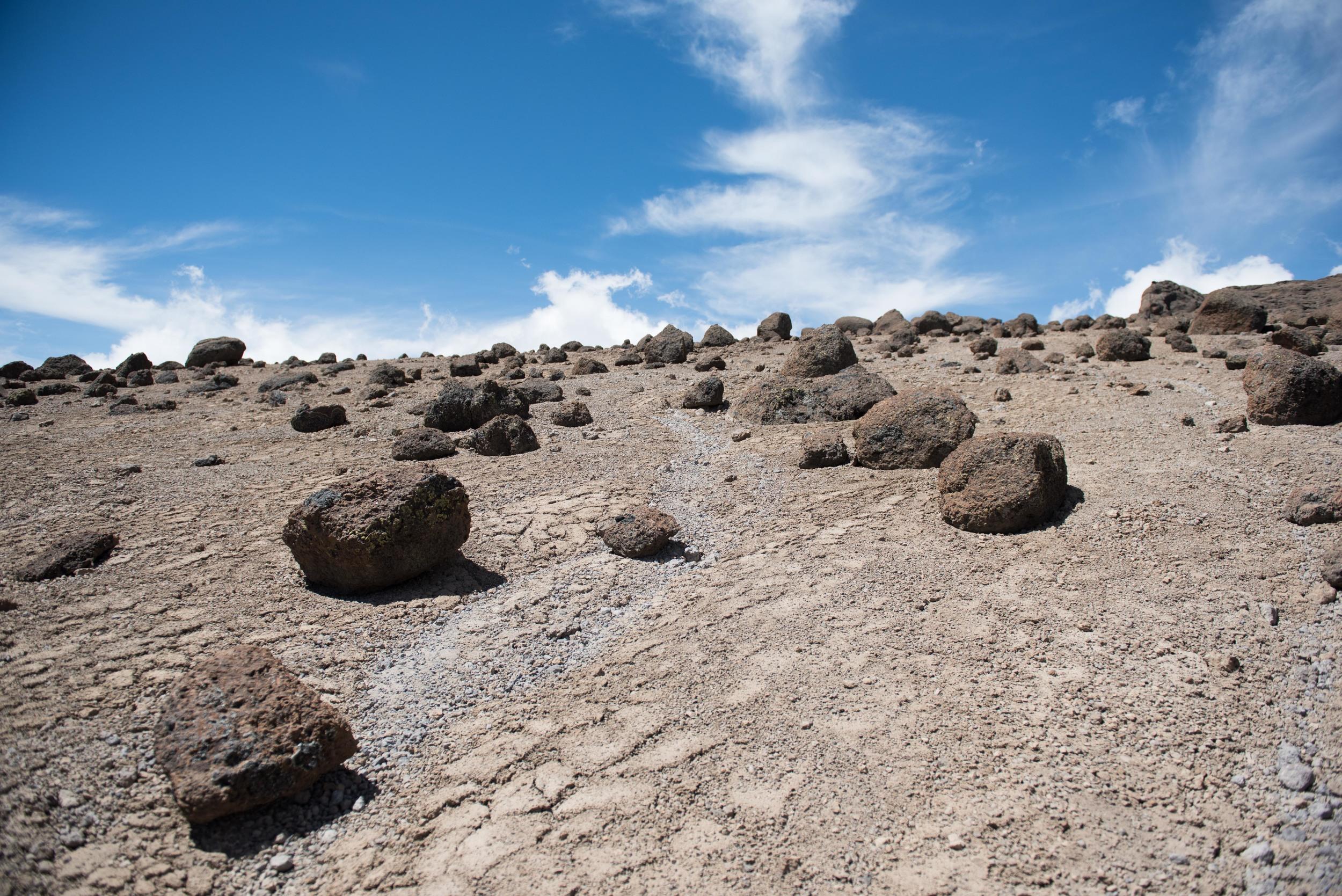 WEB_Kilimanjaro-23.jpg