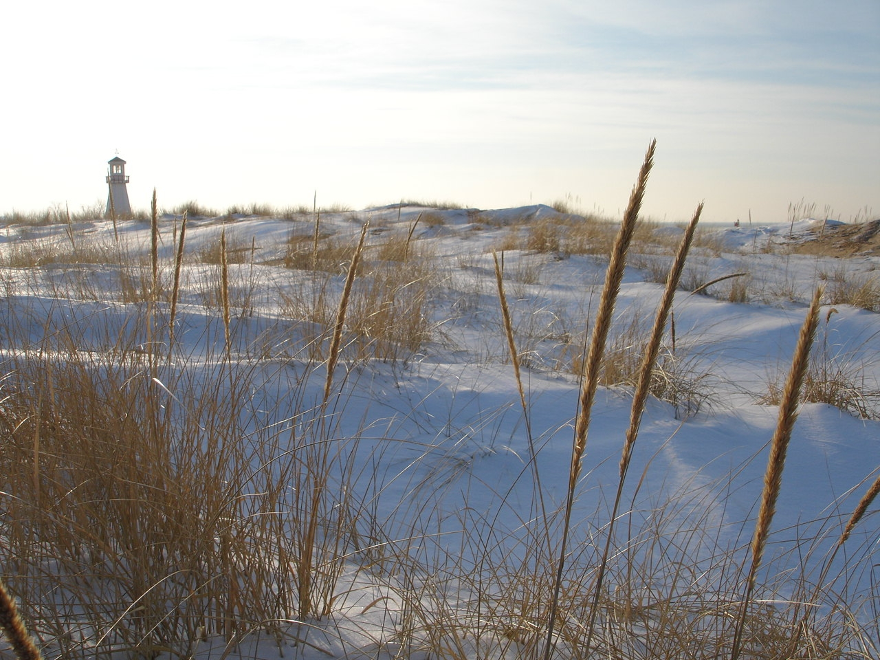 Sunny Winter's Day at New Buffalo Beach