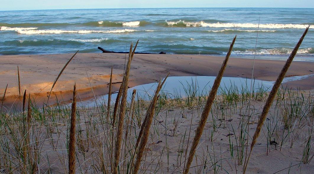 Lake Michigan and Dunegrass Lakeside, MI