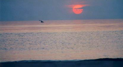 Sunset Lakeside, MI