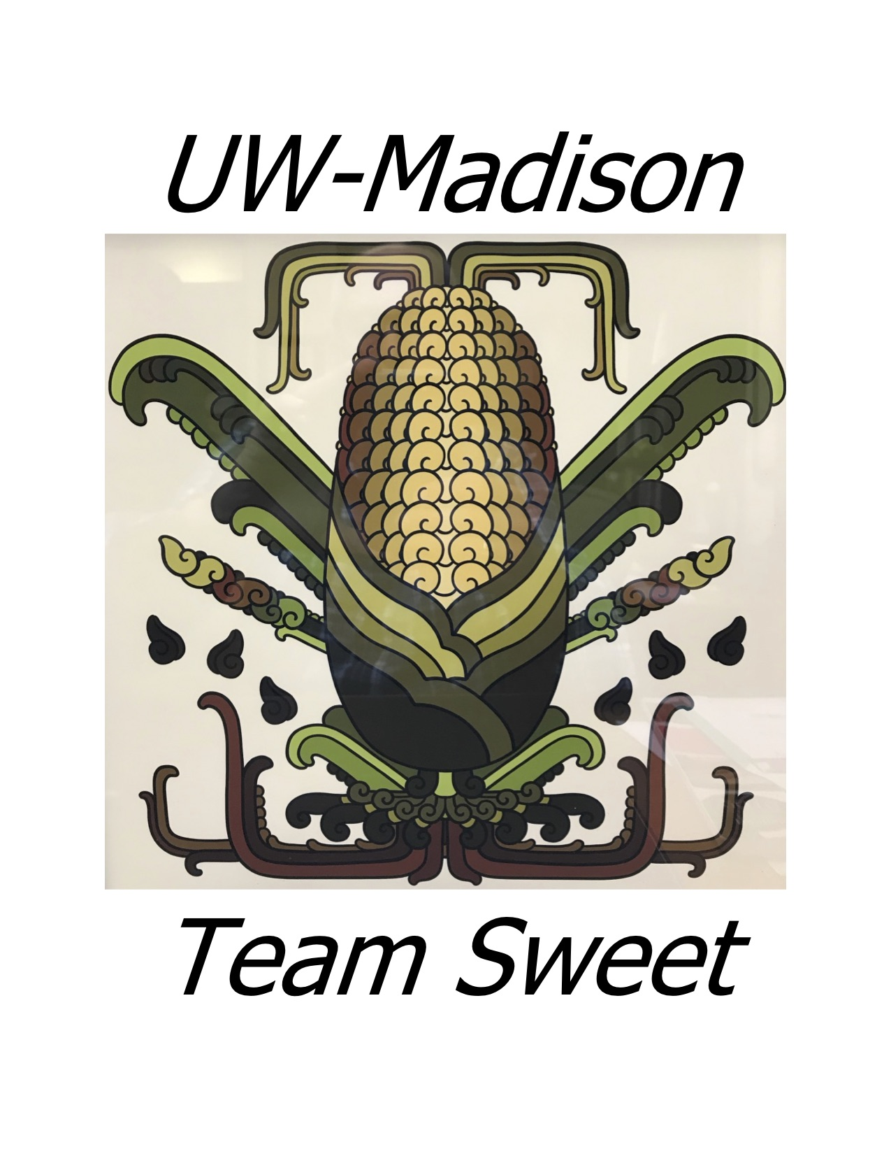 UW_Madison_Team_Sweet.jpg