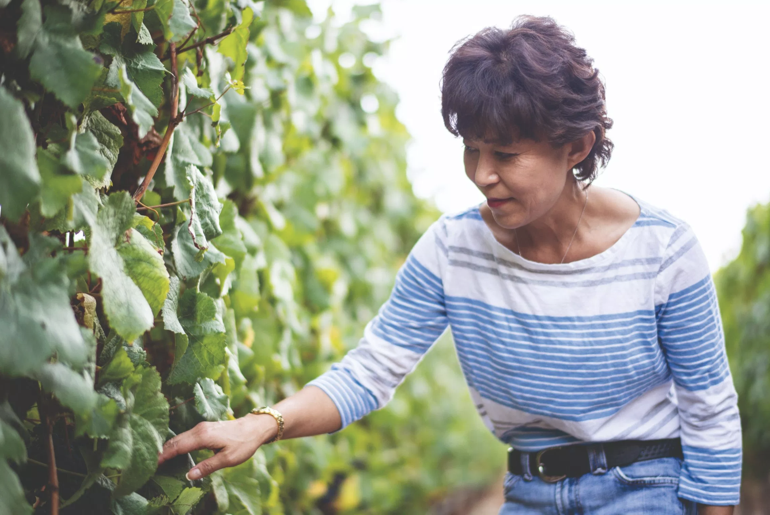Epicure Asia - Akiko Freeman shares her journey into winemaking for Freeman winery.