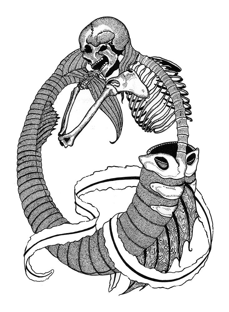 Skeleton Mermaid T-Shirt Design