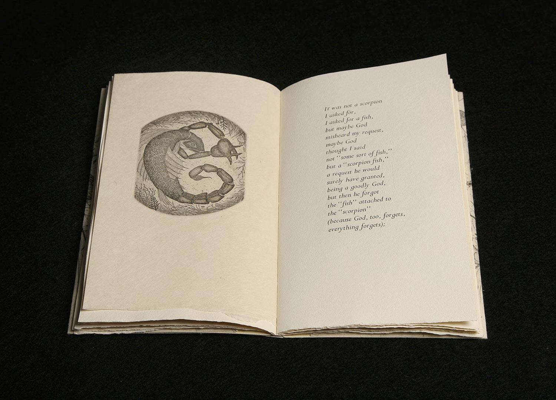 """""""Scorpion Fish"""" from Iskandariya"""