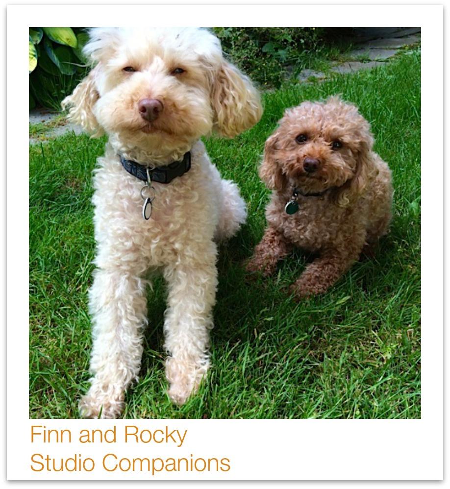 Finn and Rocky
