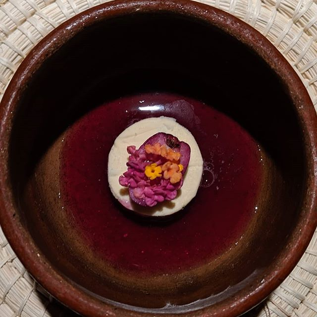 Im going to do something proper for this trip as far as photos are concerned but if you're looking to get fancy and you're in #quito #ecuador🇪🇨 visit Urko for their 10 course tasting menu... Quito, Ecuador 2019