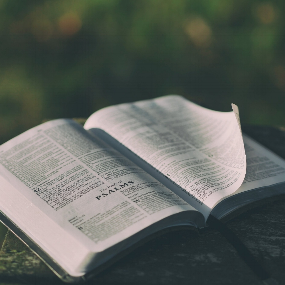 THE WORD OF GOD - We believe that the Scriptures of the Old and New Testaments are the inspired Word of God, without error in the original writings, complete as the revelation of God's will for salvation and for Christian living and are the supreme and final authority in all matters to which they speak. (Jn. 10:35; Jn. 17:17; II Tim. 3:16-17; II Pet. 1:19-21)