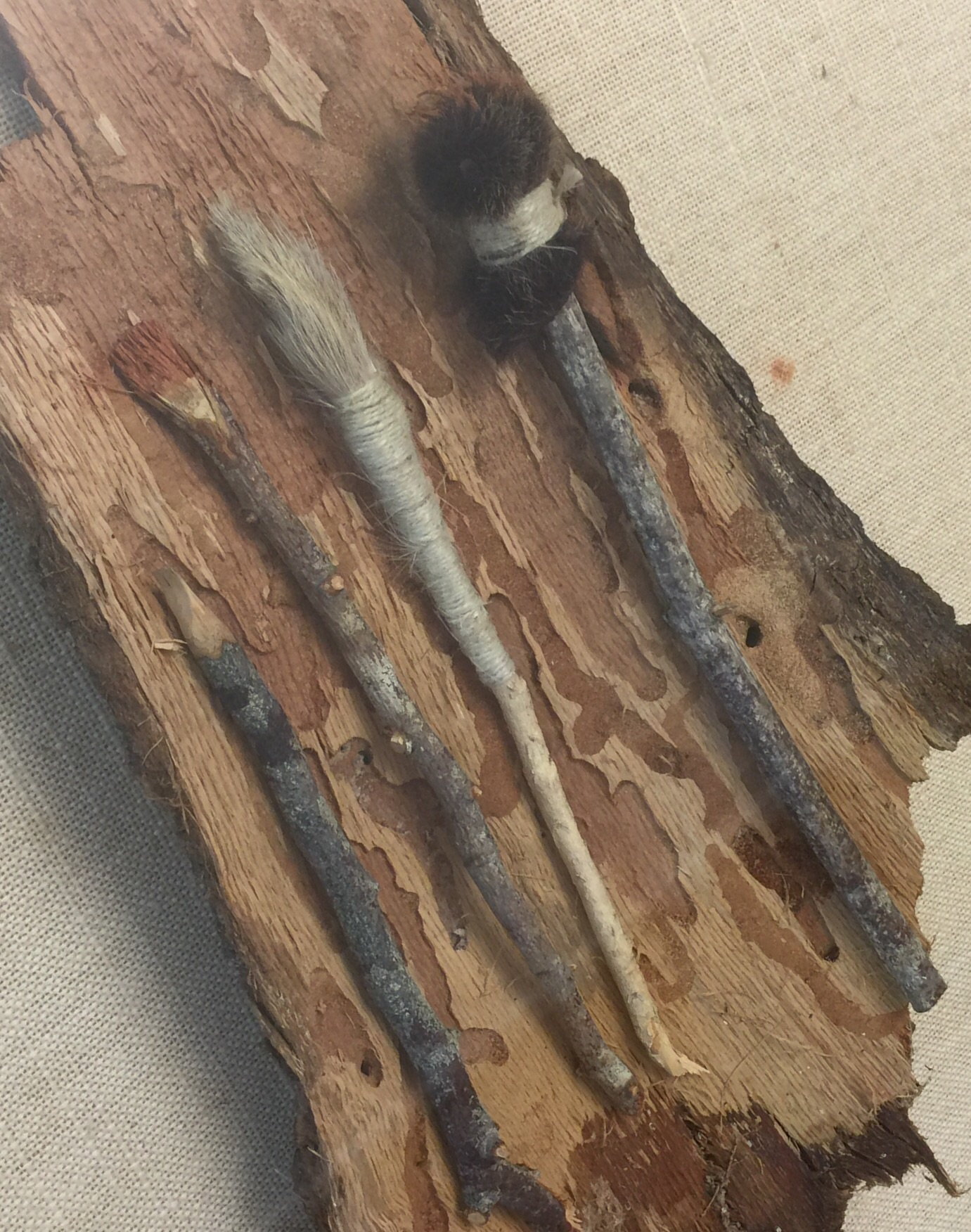 Cro Magnon man's paint brushes. They were made of wooley mammoth hair.