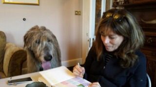 Seamus, the wolfhound who lives at the Milltown hotel had me teach him to paint.