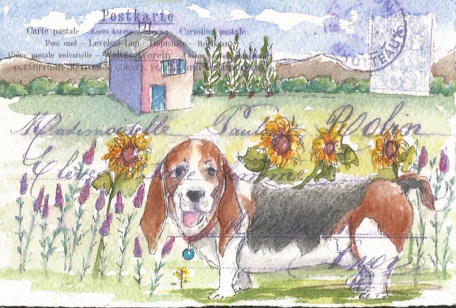 basset sunflowers edited.jpg