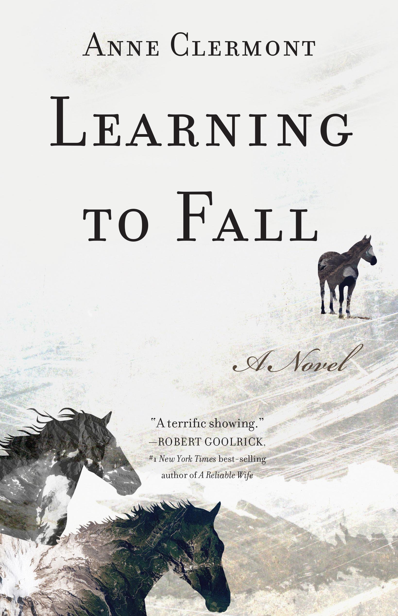 horse book, show jumping novel