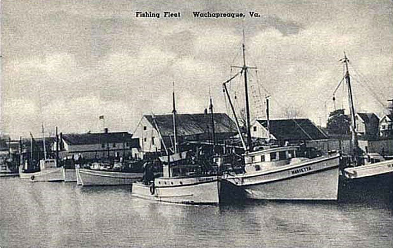 Wachapreague commercial fishing fleet