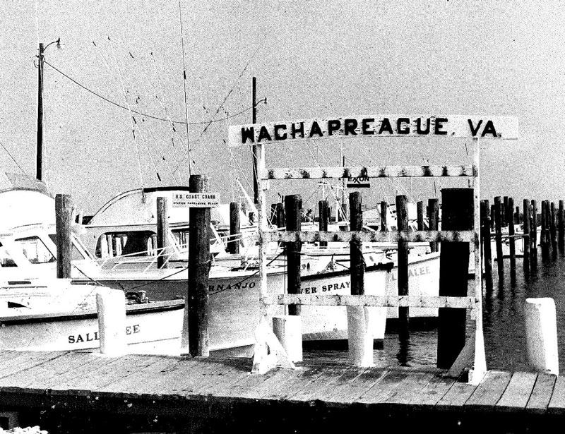 Wachapreague Marina