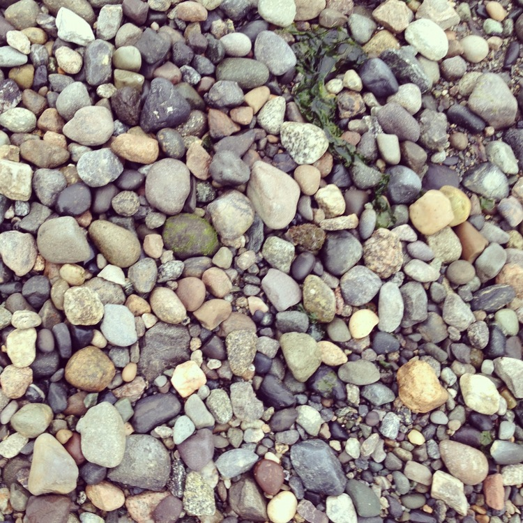 pebbles at anacortes
