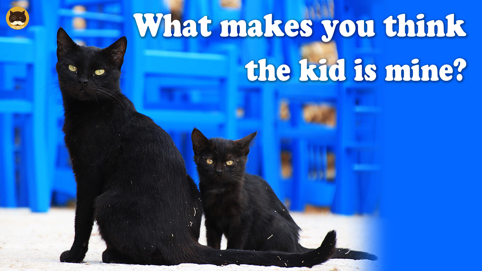 what makes you think the kid is mine1 copy.jpg