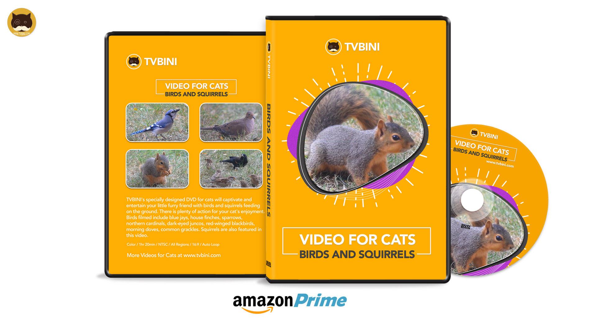 TVBINI DVD Video For Cats for wb.jpg