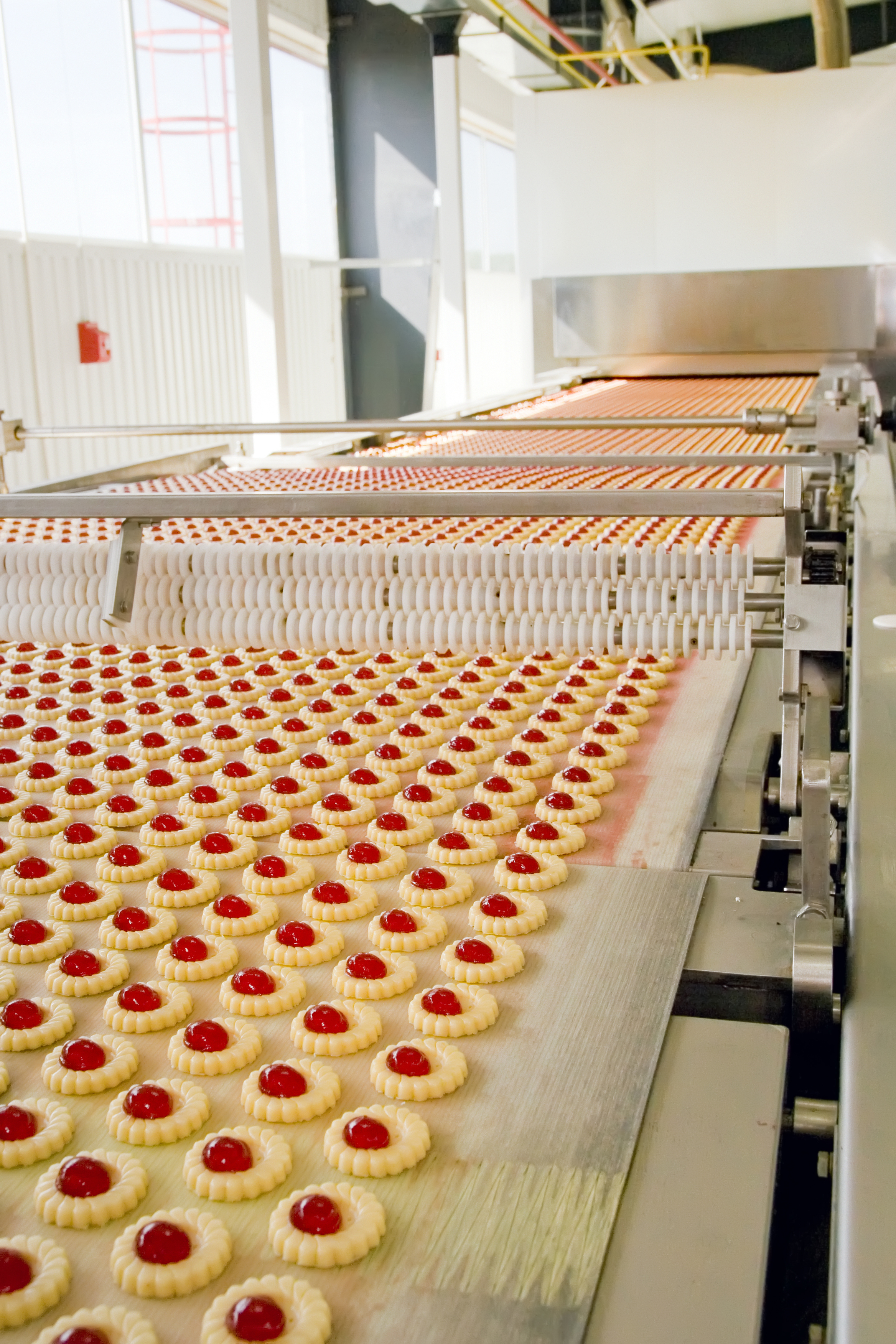 bigstock-production-cookie-in-factory-26348057.jpg