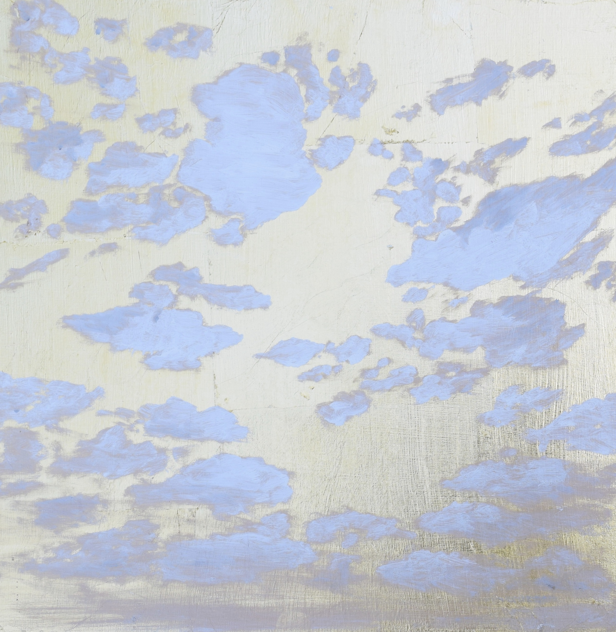 Cloud Study for Ivy