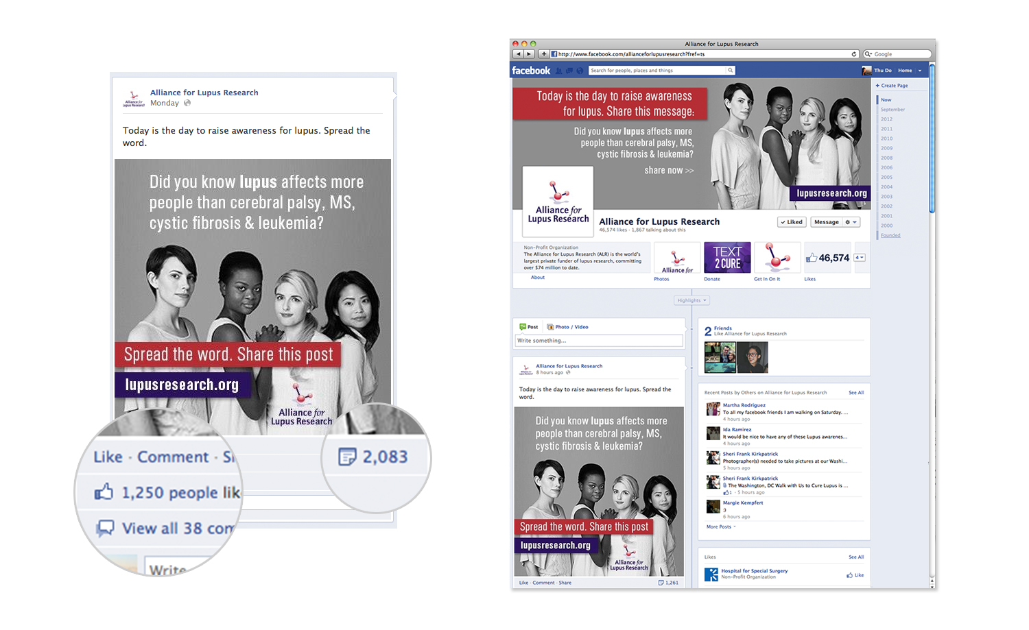 Alliance for Lupus Research Social Media Campaign Facebook
