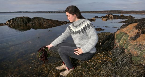 Seaweed: the next big step for Irish food and farming?  The health and food potential of the ocean's foliage is clear, and it makes economic and environmental sense to develop our sea-farming industry  Sat, Nov 19, 2016, 09:00
