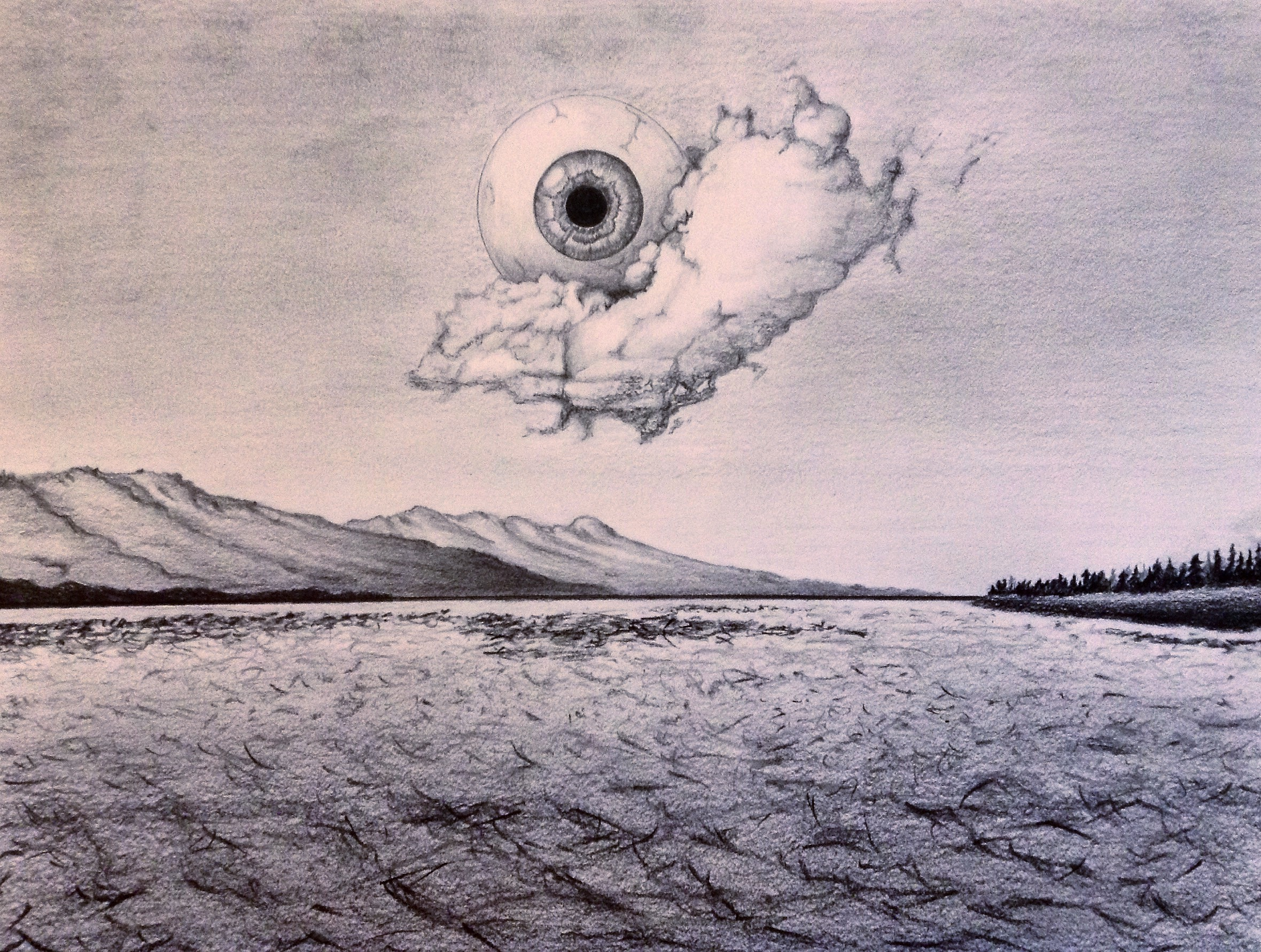 Landscape / pencil, 8.5x11in / $100