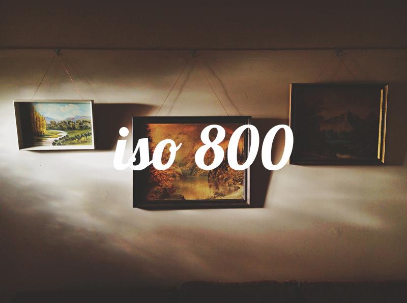 800a.jpg