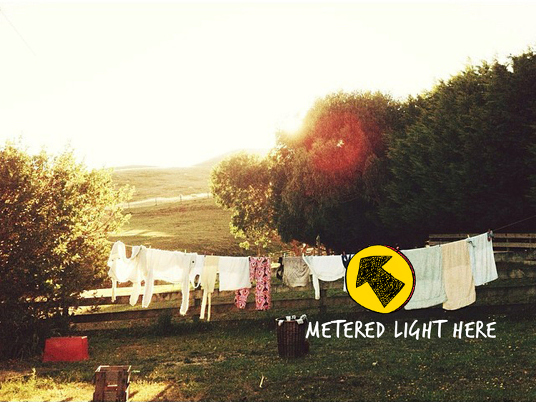 Backlight-Pretty-Light-2a.jpg