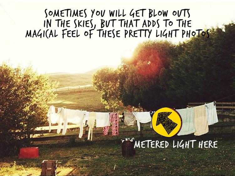 Backlight-Pretty-Light-2b.jpg