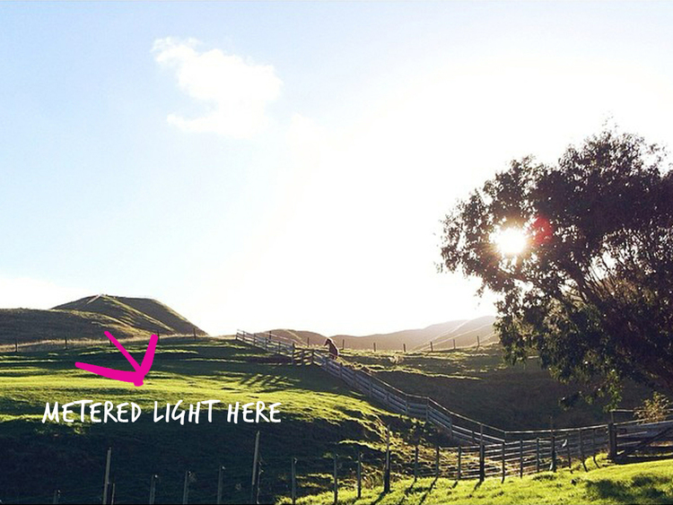 Backlight-Pretty-Light-3a.jpg