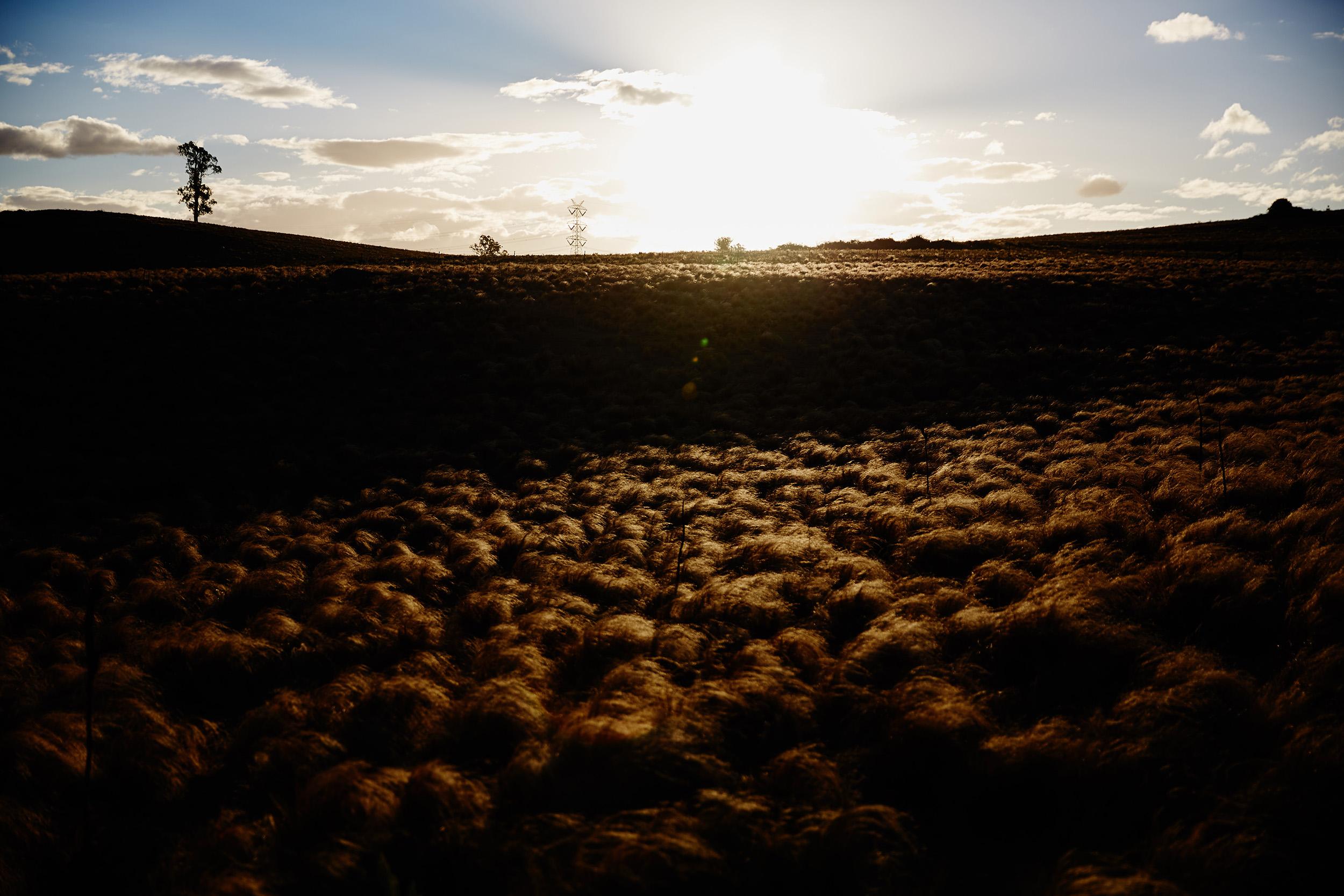 Wollondilly Sunset.jpg