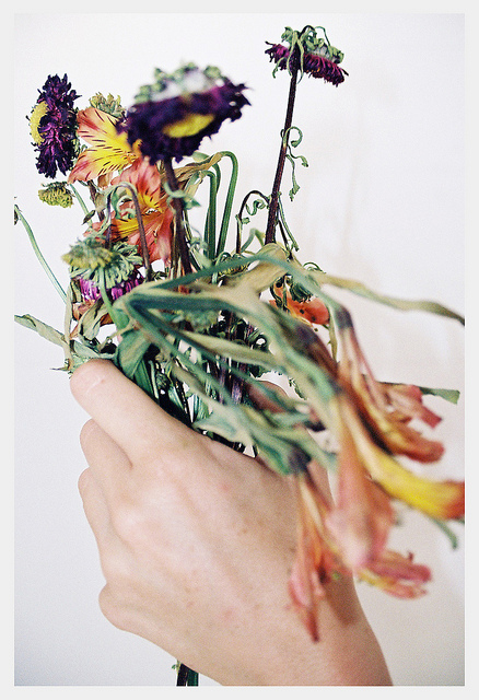 hand with wild flowers.jpg